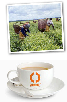 Teadirect pickers and a cuppa